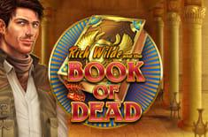 Играть на деньги или бесплатно в виртуальный автомат «Книга Мертвых»
