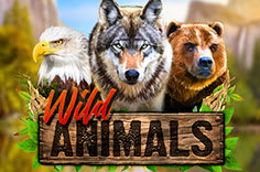 Увлекательный автомат Wild Animals с фриспинами